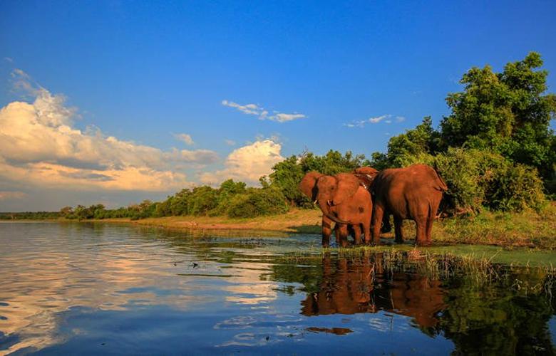 Το περίφημο Εθνικό Πάρκο της Νότιας Αφρικής