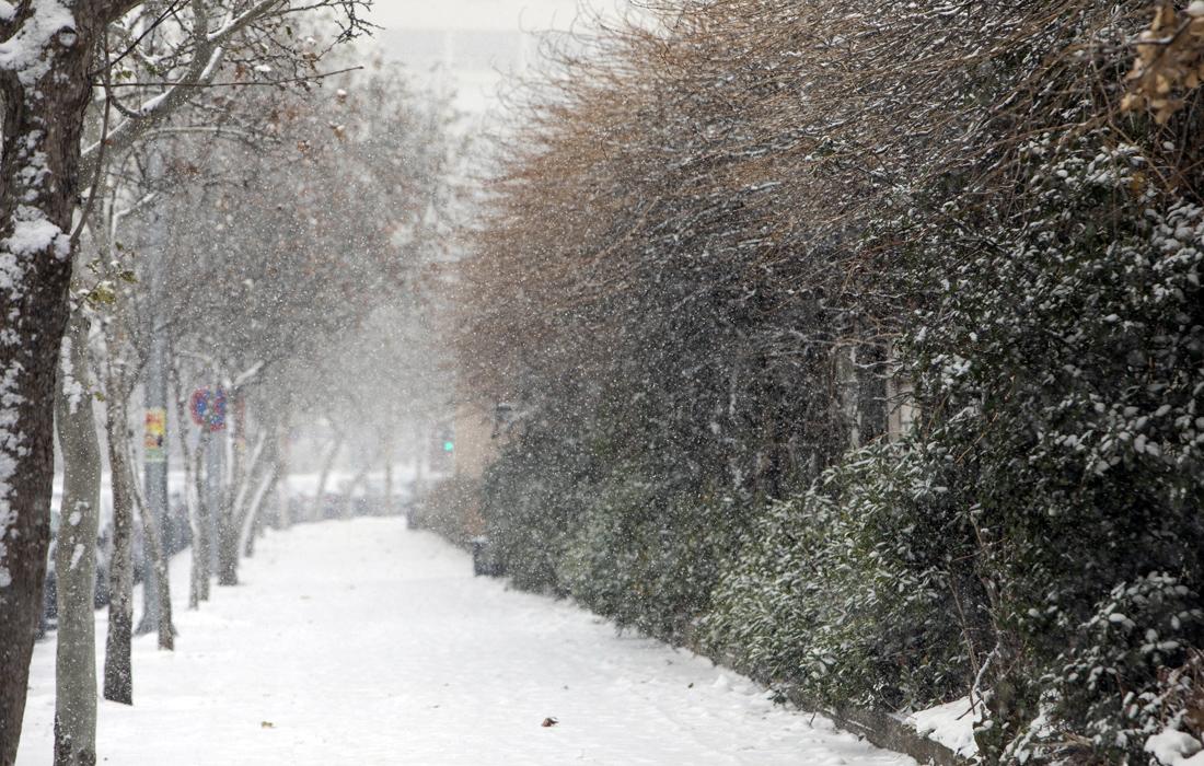 Άσπρισαν τα Ζαγοροχώρια από την έντονη χιονόπτωση