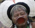 «Ο Μπολσονάρου θέλει να αποτελειώσει το δάσος και τους Ινδιάνους»