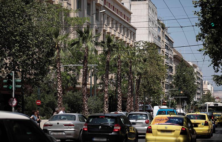 Μεγάλος Περίπατος: Η νέα «εξωτική» όψη της Πανεπιστημίου γεμάτη από φοίνικες