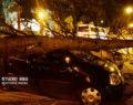Θυελλώδεις άνεμοι στο Ναύπλιο ξερίζωσαν δέντρα -Καταστροφές σε ΙΧ