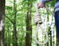 45χρονος βρέθηκε κρεμασμένος  σε δέντρο